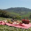 Gastaldi Picnic agosto